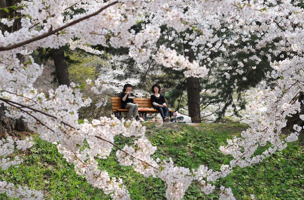 ©Toru Morimoto/Akashi Photos