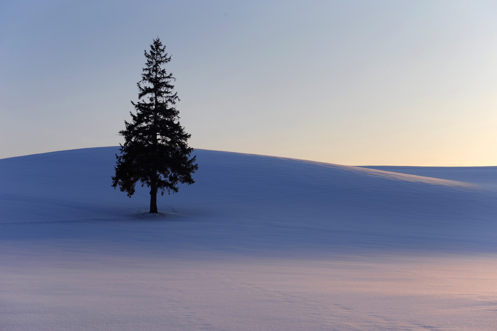 Snowy landscape in Biei, photo tout to Japan