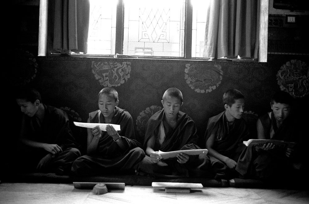 Young Tibetan Buddhist monks chant sutra in Shechen Monastery in Kathmandu, Nepal.
