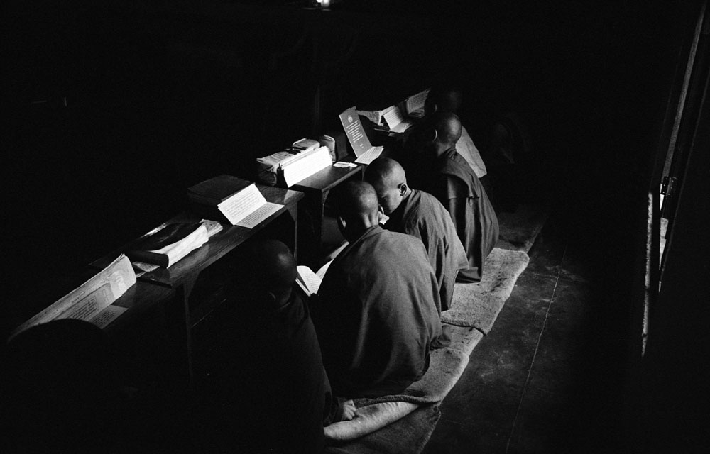 Tibetan monks in a monastery in Bir, India, during the Tibetan buddhism class.