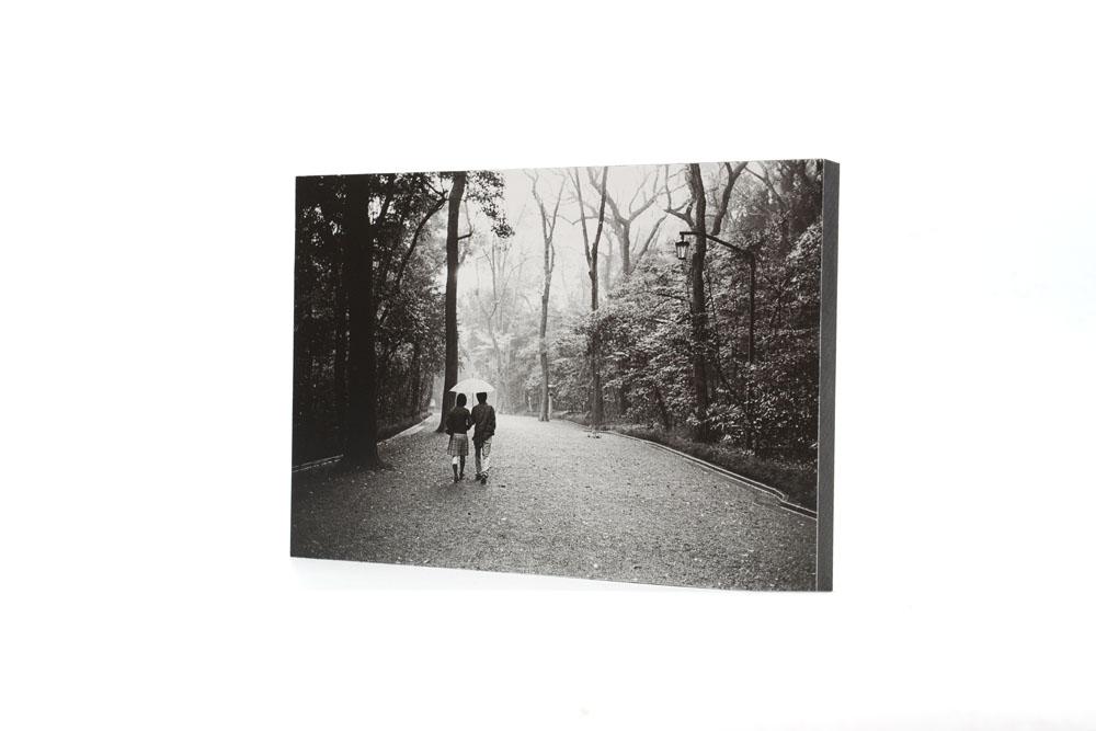 Couple walking in a park a rainy day near Meiji Jingu