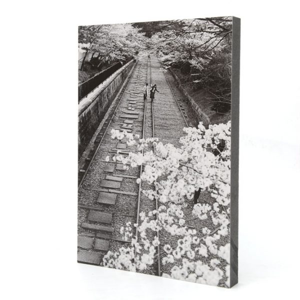 Girls walking on a railway in Kyoto during cherry blossom season