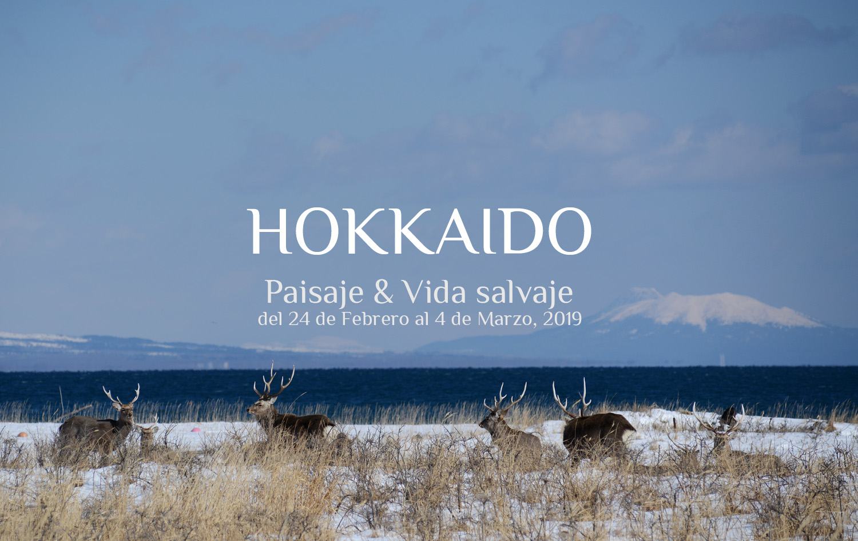 Viaje Fotográfico Hokkaido
