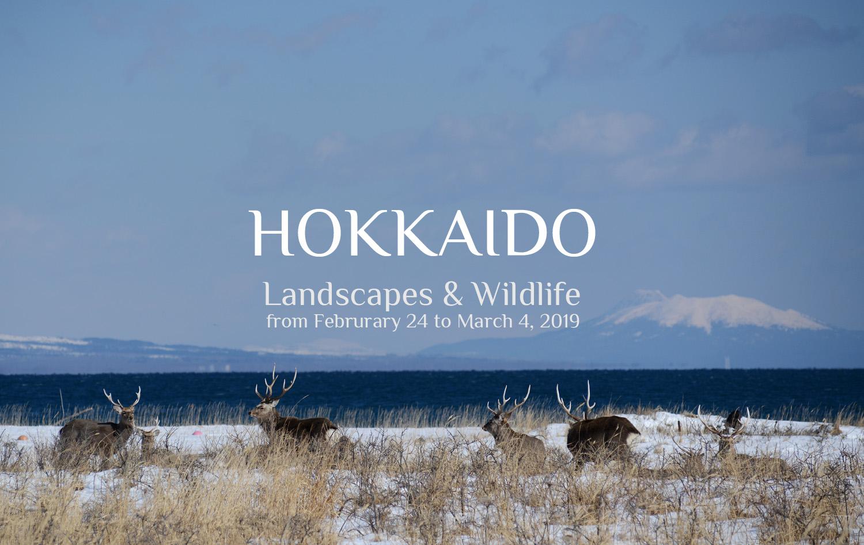 Hokkaido Photo Tour 2019 Akashi Travel