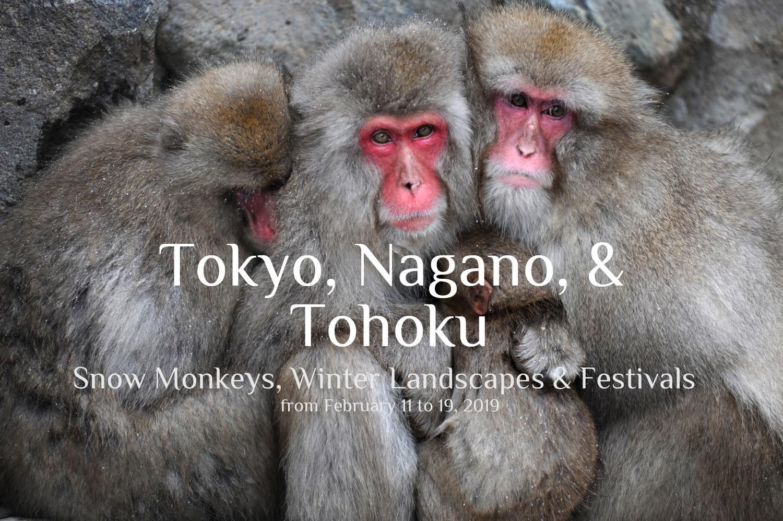 Winter Photo Tour to Japan 2019